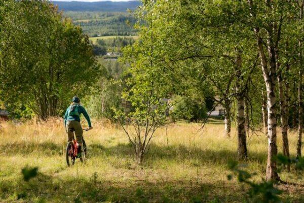 2018.08.17 cykelguide Jonte-10