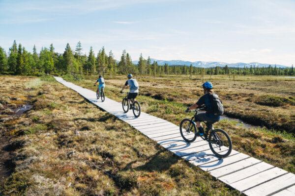 Jackie Paaso and Reine Barkered biking towards Issjödalen in Jämtland, Sweden.
